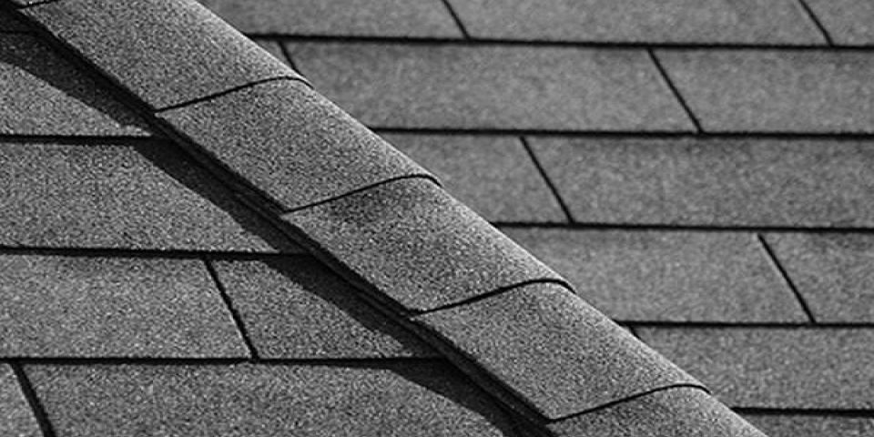 Shingle and Metal Roofs